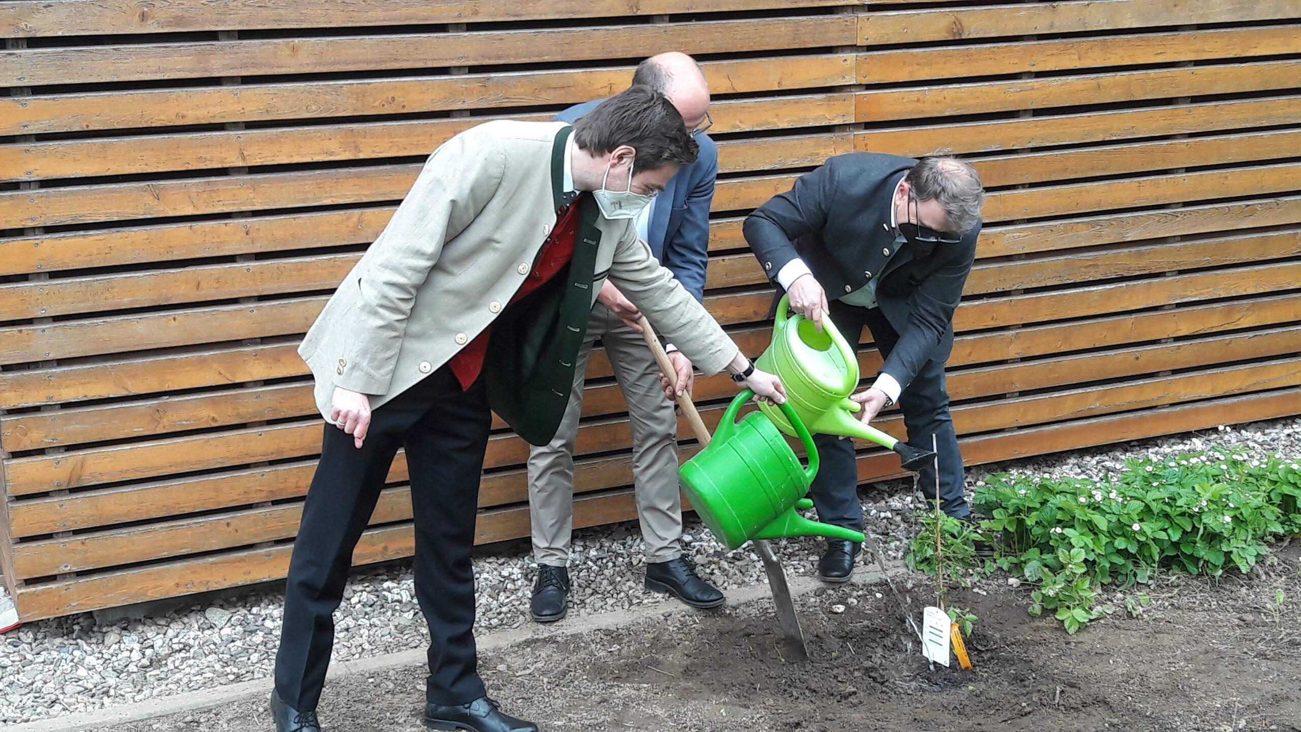 Pflanzaktion Umweltbildung trägt Früchte